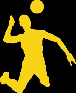 Le club de volley
